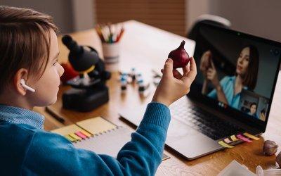 فوائد ونطاق منصة التعليم عبر الإنترنت